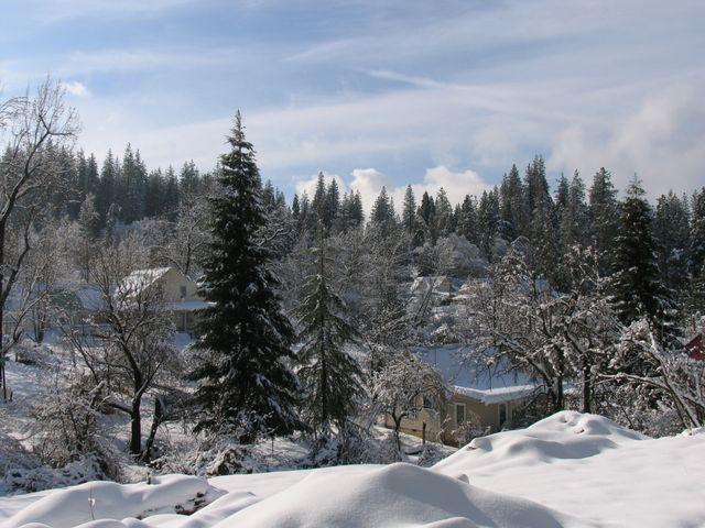 Winter Wondeerland
